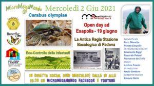 Antica Regia Stazione Bacologica di Padova Open Day 19 giugno Esapolis